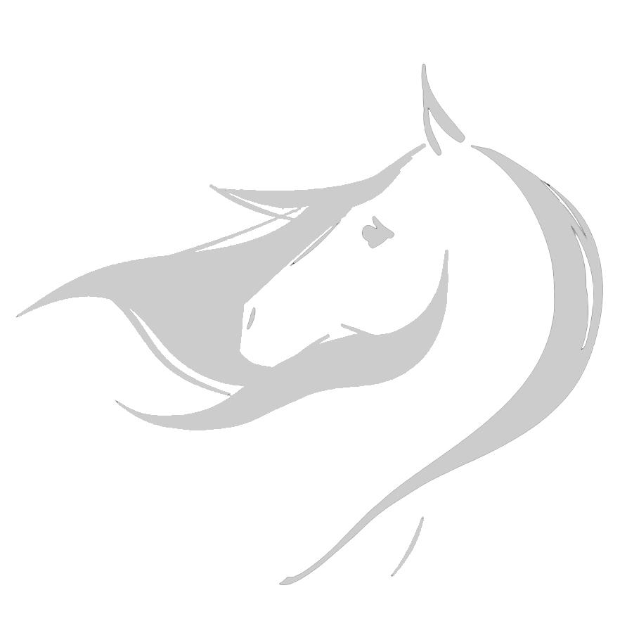 Equine Photography, Art & Design